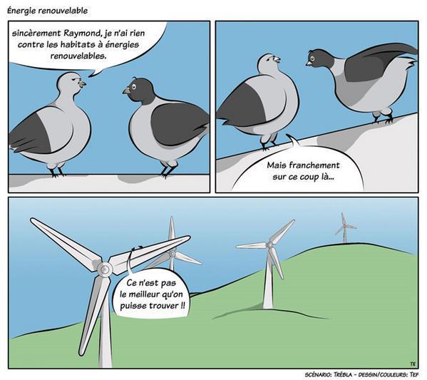 Le soleil est la principale source d'energie renouvelable( les autres ...